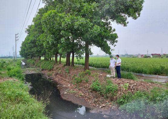 Hà Nội - Vụ lúa xuân năm 2020-2021: Nỗ lực bảo đảm đủ nước gieo cấy